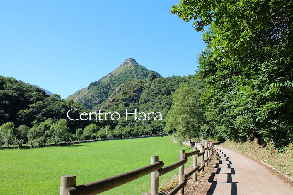 Centro Hara - Ruta del Alba