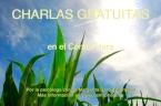 Charlas gratuitas Hara II