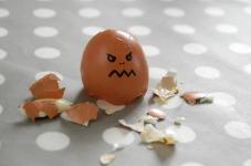 egg-100808