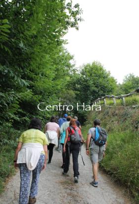 Centro Hara 19